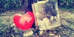 Bonaventure After Hours: My Skully Valentine